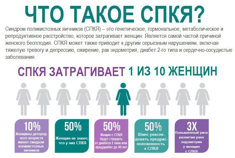 Статистика СПКЯ