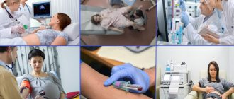 Анализы и исследования при беременности