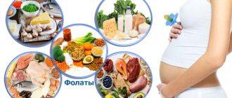 Основные питательные вещества при беременности