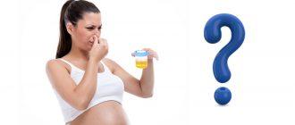 Неприятный запах мочи при беременности