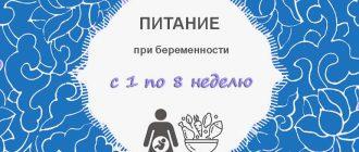 Питание при беременности с 1 по 8 неделю