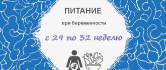 Питание при беременности с 29 по 32 неделю