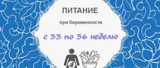 Питание при беременности с 33 по 36 неделю