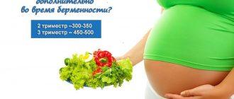 Количество дополнительный калорий при беременности