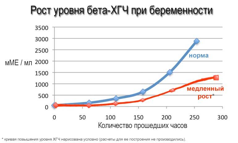 Медленный рост ХГЧ на графике