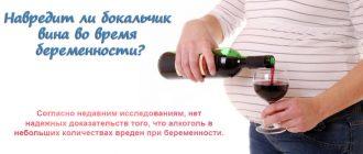 Навредит ли бокал вина при беременности